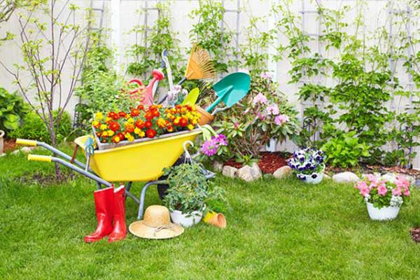 Astuces et conseils en jardinage for Au jardin conseils en jardinage
